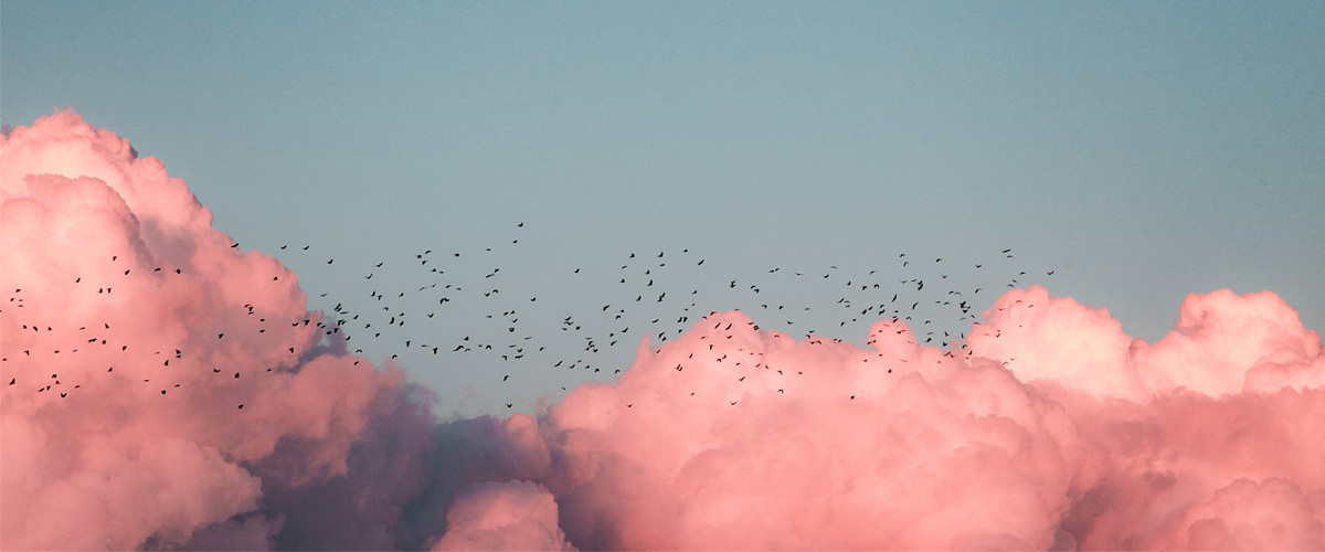 ¿Qué es Movistar Cloud? Descubre todos los detalles del servicio